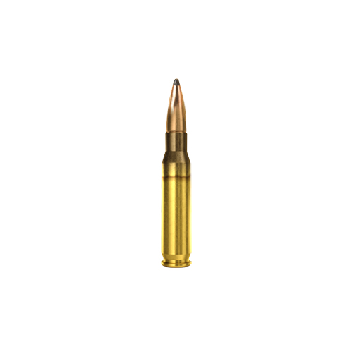.308 Win EXPT 180gr
