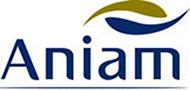 Associação Nacional da Indústria de Armas e Munições