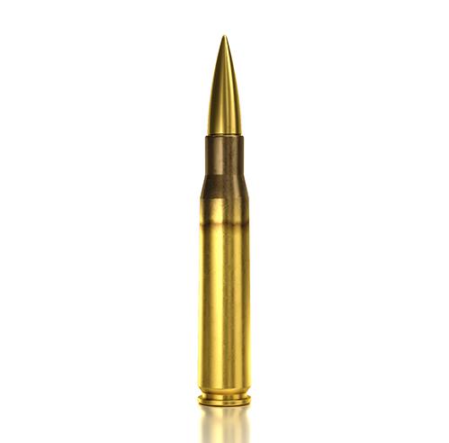 .50 Sniper Solid SNIPER 1 770gr